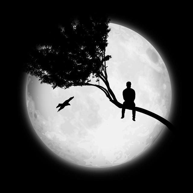 Free Image on Pixabay - Moon, Man, Tree, Only | Moon photography, Moon art,  Night sky photos