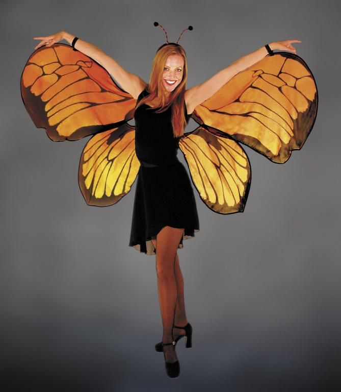 Pin By Lorie Follett On Costumes Costumes Butterfly Costume