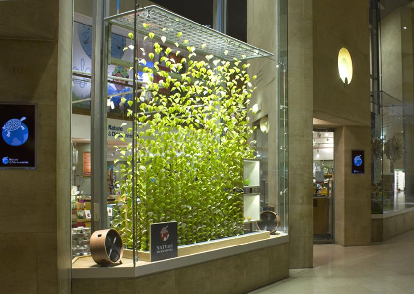 Envol e v g tale window for nature et d couverte paris - Magasin deco noel paris ...