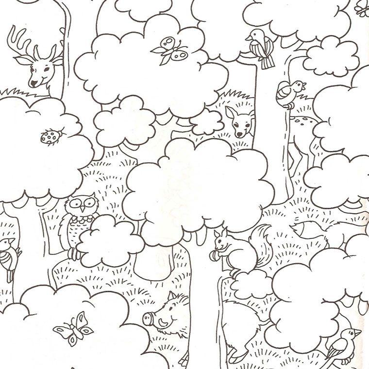 Coloriage nature et animaux maternelle pinterest animaux foret et animaux foret - Coloriage paysage automne ...