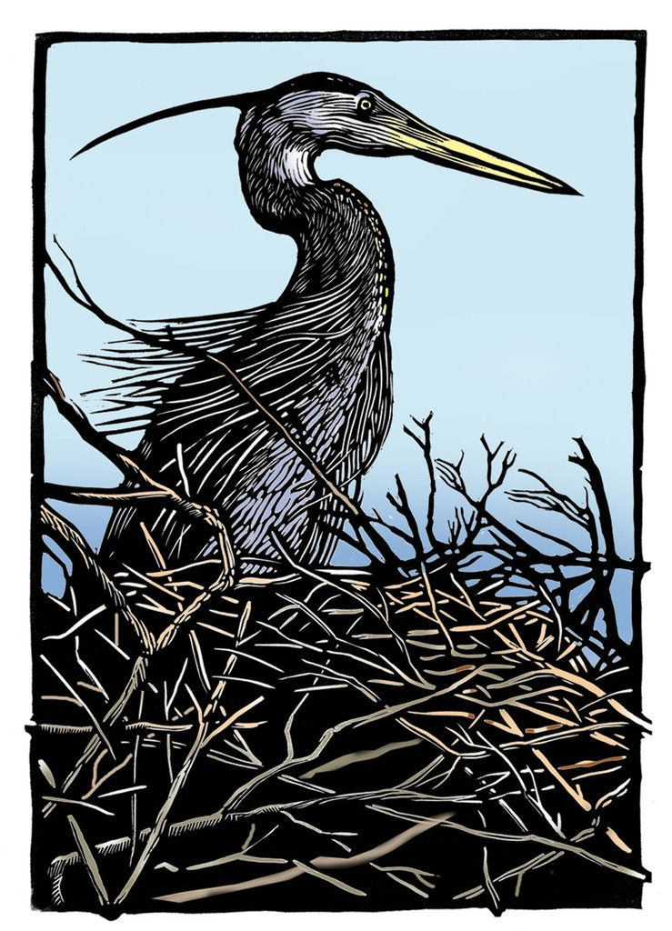 The Nest ~ Linocut, 8.25 x 12 inch ~ Rik Olson - Notice the frame on this.