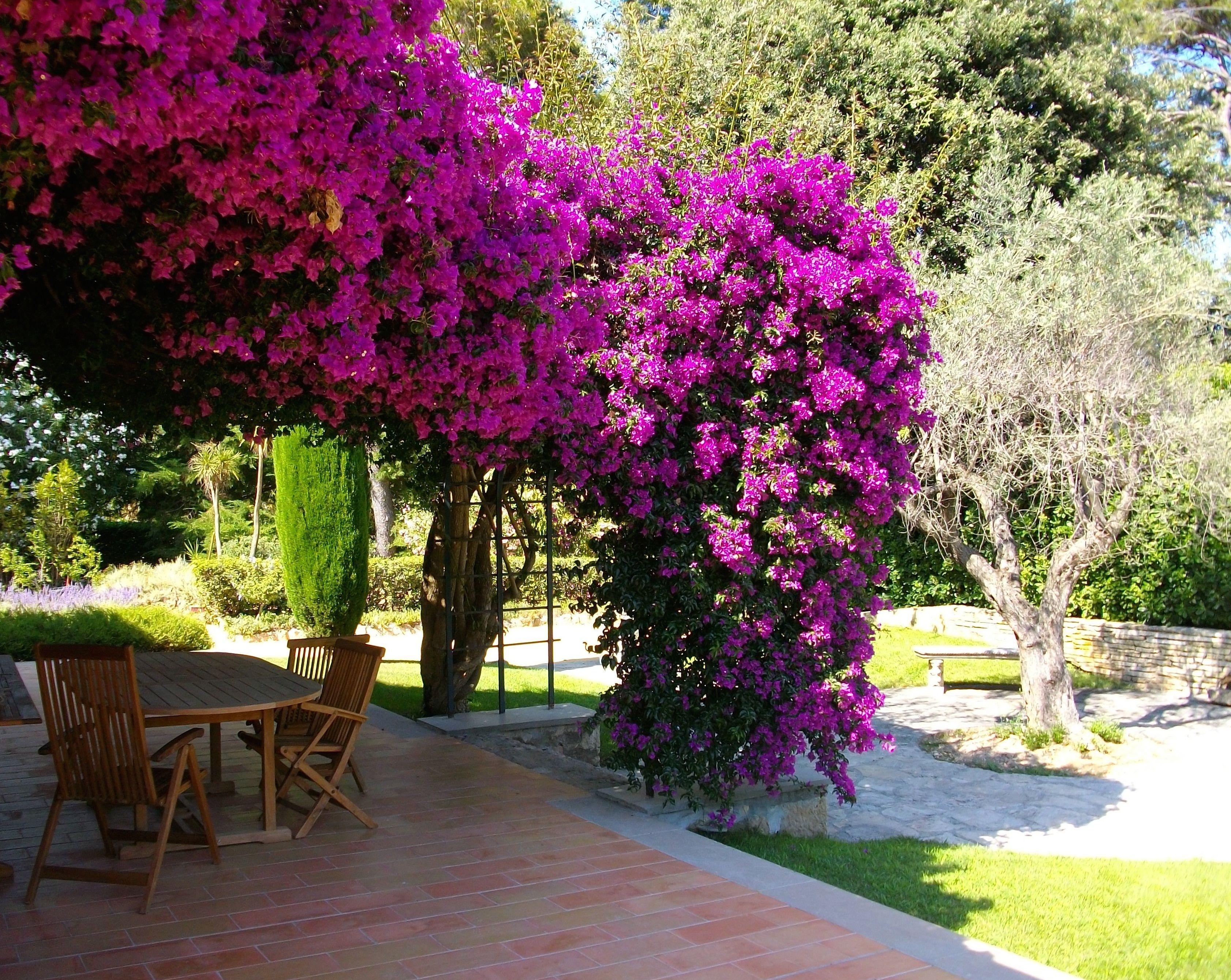 Terrasse fleurie pour joindre l utile  l agréable