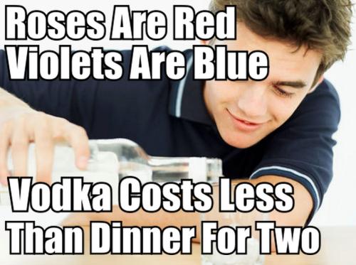Skyyvodka Absolutvodkaus Costs Less Vodka Pinterest
