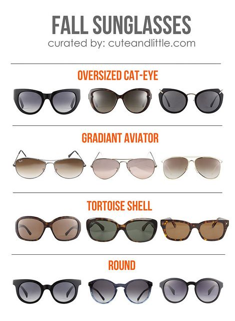 fall 2013 sunglasses trend