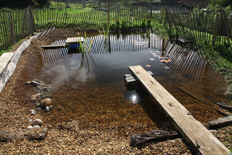 Natural Plunge Pool As In No Chemicals An Cleaner Tha Most Regular Pools Plunge Pool Swimming Pool Pond Solar Fountain