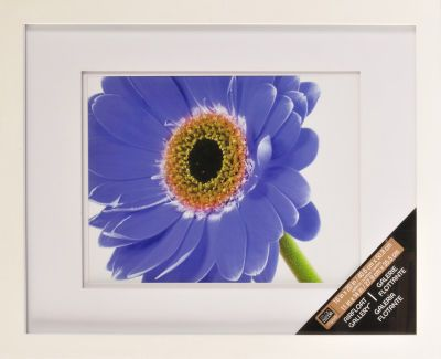 michaels 11x14 white gallery frame w double float mat 16x20 matted to 11x14