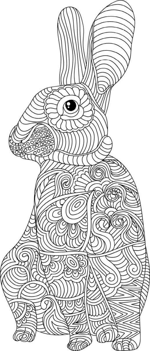 Pin by Edit Szab on Adult coloring Bunny coloring pages