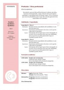 Curriculum Vitae Modelo Funcional 3 Proyectos Que Debo Intentar