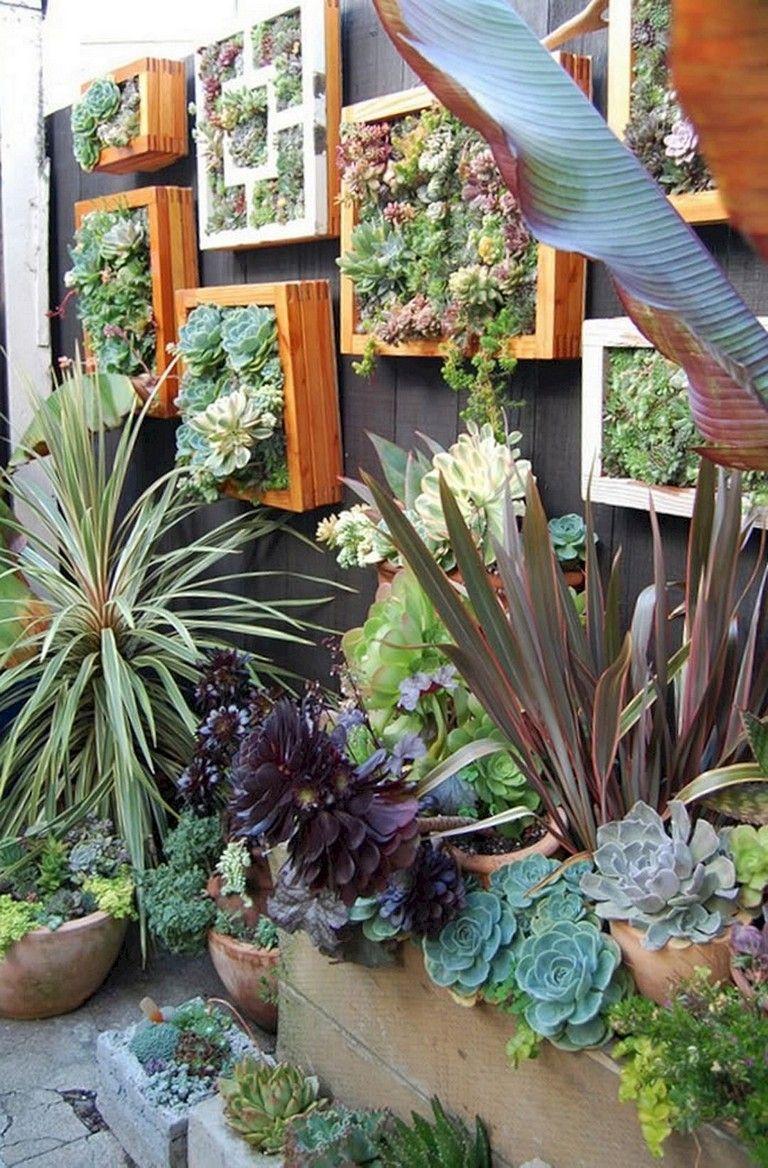 30 remarkable diy wall gardens outdoor design ideas on indoor vertical garden wall diy id=42437