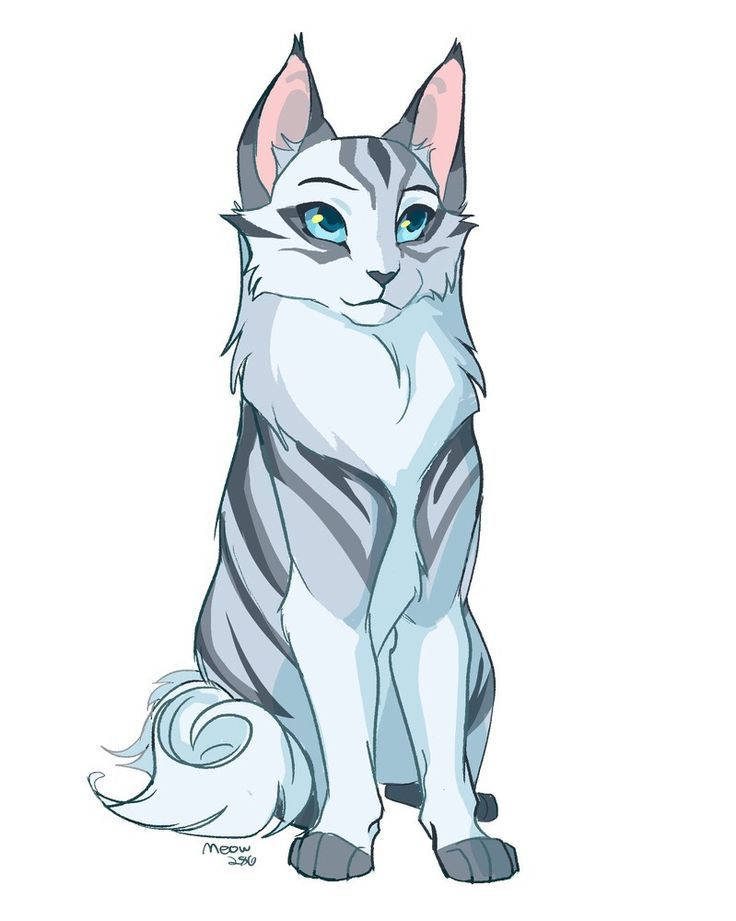 Photo of Silverstream or Feathertail. – cats – #feathertail #cats #or #silverst …
