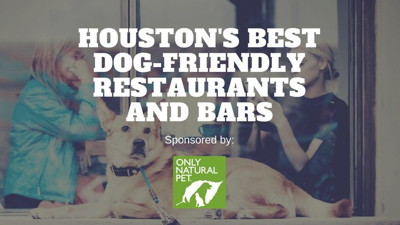 The Best Dog Friendly Restaurants And Bars In Houston Dog Friends Houston Bars Best Dogs