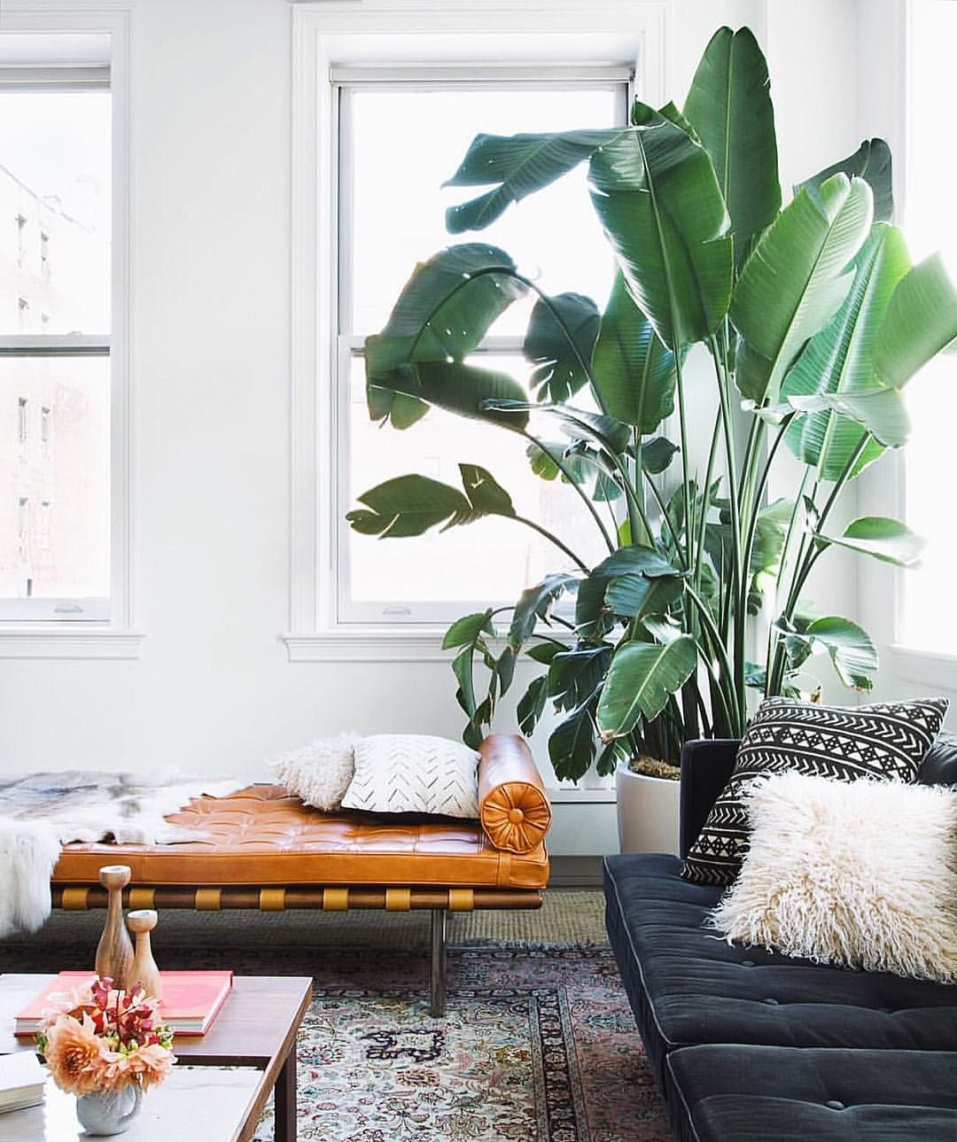 Living room Inspo of the day via @homepolish - Anyone know the name ...