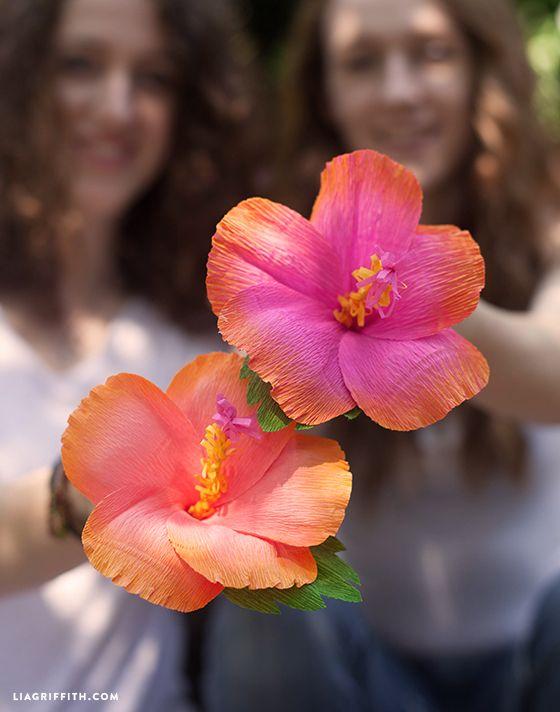 Diy Crepe Paper Hibiscus Flower Paper Flowers Paper Flower