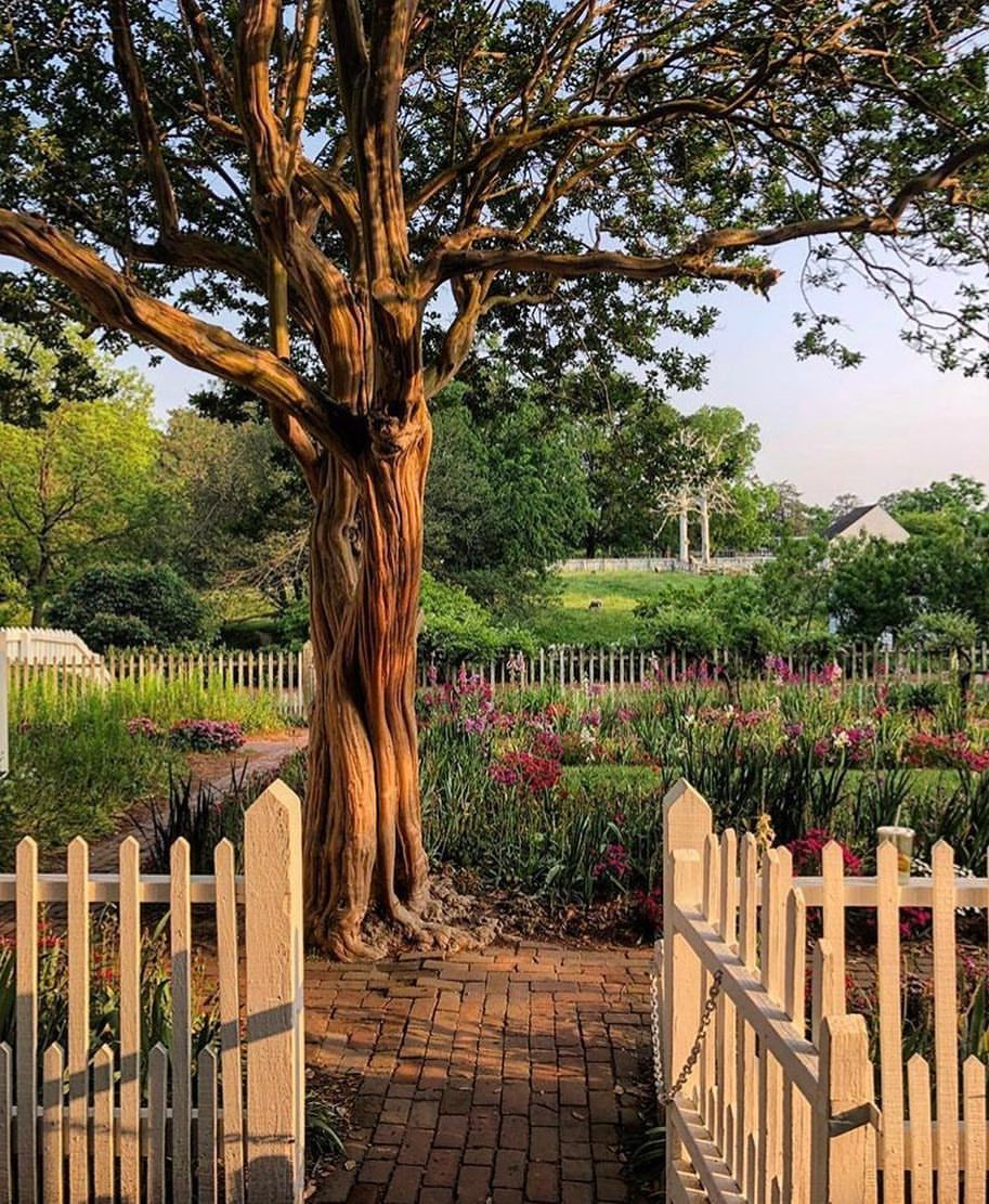 Beyond the garden gate. 😍 #SLTravels | travel | Pinterest | Garden ...