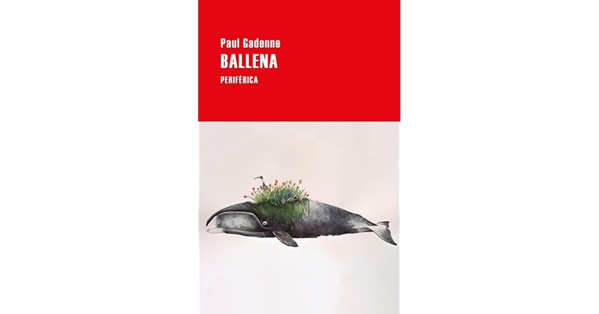 Pin On Libros 2020