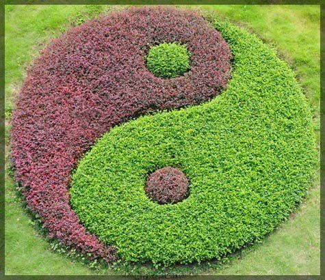 #yin and yang flower bed...