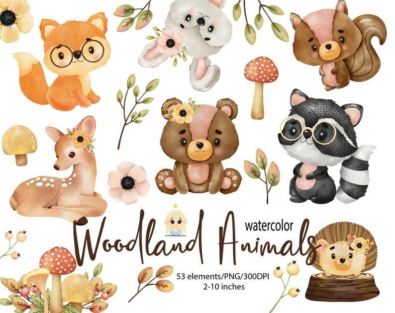 Woodland Animals Watercolor Digital Clipart Woodland Nursery Clipart Woodland Baby Shower Forest Animals Woodland Creatures Watercolor Animals Animal Clipart Woodland Animals