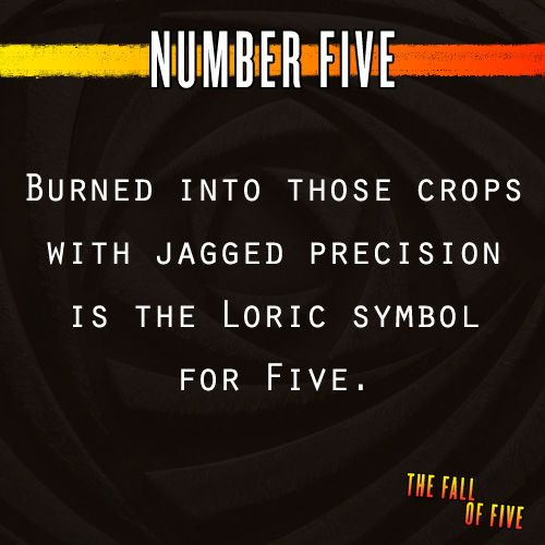 Number Five Burned Into Those Crops With Jagged Precision Is The