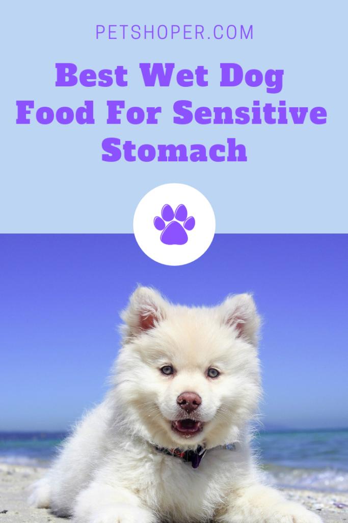 Best Wet Dog Food For Sensitive Stomach Top 4 Reviews Wet Dog Food Dog Food Recipes Sensitive Stomach