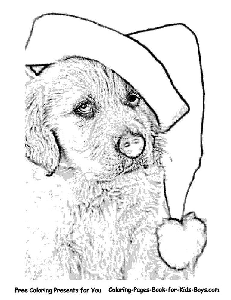 27 Amazing Picture Of Golden Retriever Coloring Page Christmas