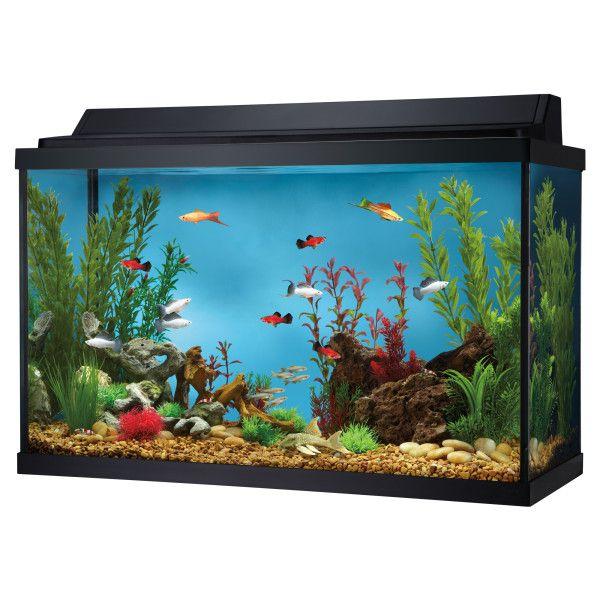 Petsmart Com Fish Sale Top Fin 29 Gallon Aquarium Hood Combo