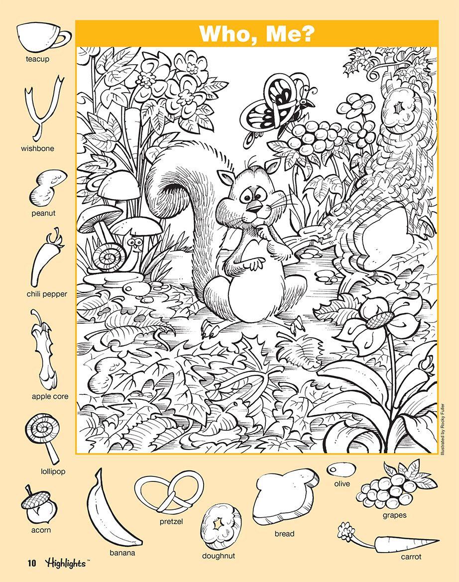 Hidden Pictures Book 3 (Series 6)