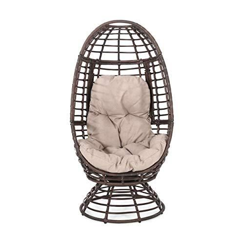 Christopher Knight Home Frances Outdoor Wicker Swivel Egg Chair with Cushion
