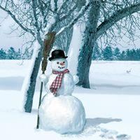 2195 Servilleta decorada Navidad