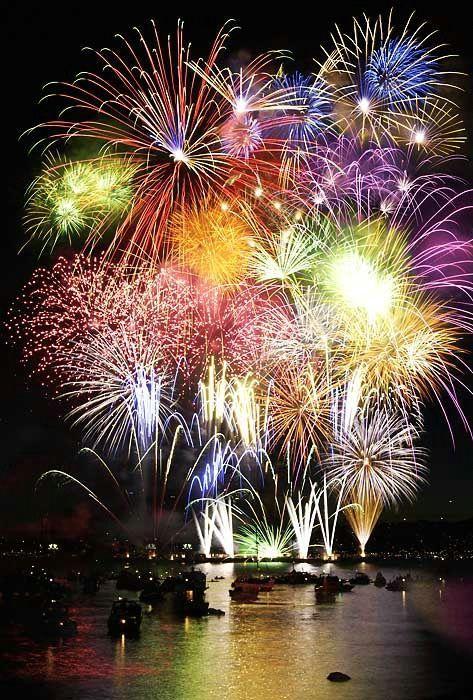 Bonne année à tous! - Floriane Lemarié