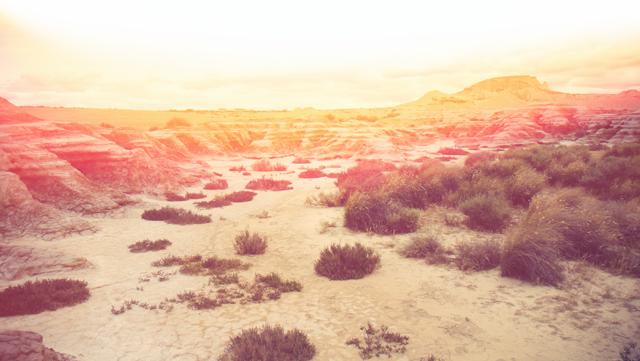 SUMMER CRUSH Trip, California desert, Desert dream