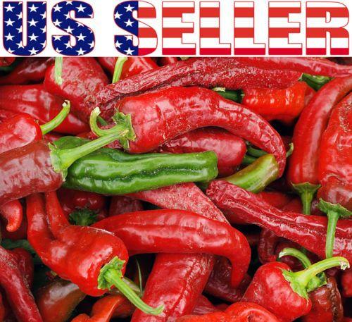 30 Organically Grown Achar Indian Hot Pepper Seeds RARE Heirloom Non