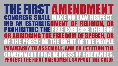 16 Free Expression Ideas Expressions Free Speech Freedom Of Speech