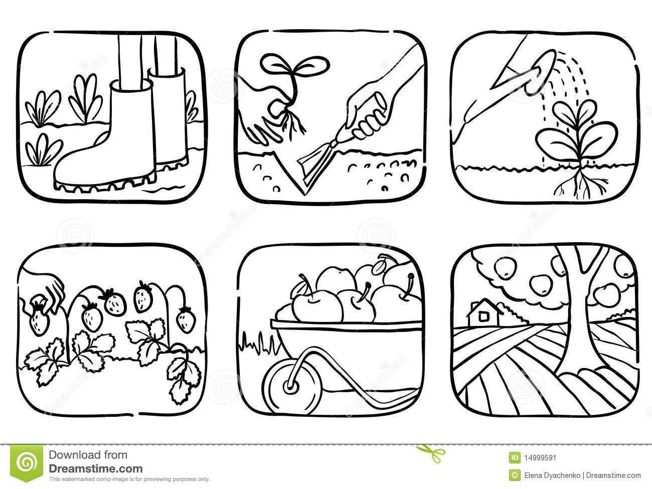 Resultado De Imagen Para Dibujo De Huerto Escolar Para Colorear