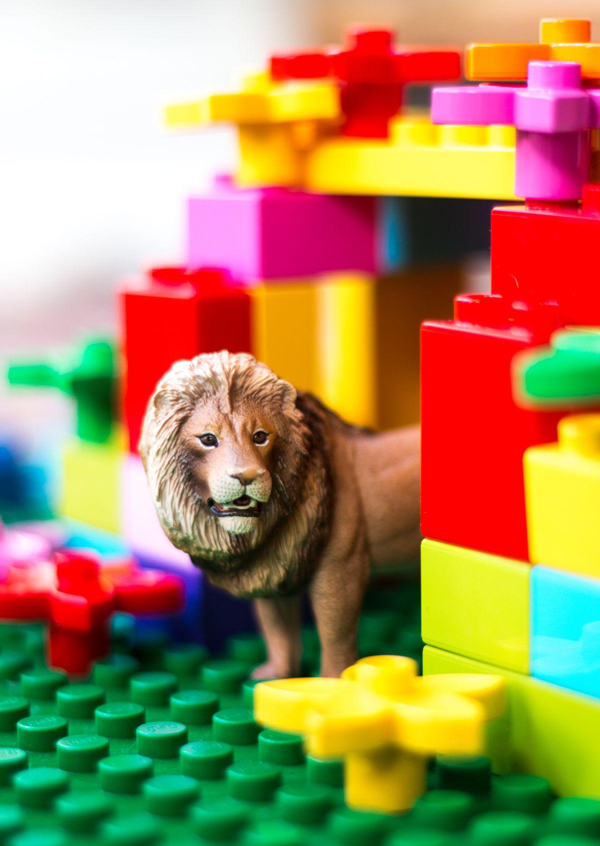 Lion_castle - this image makes me smile