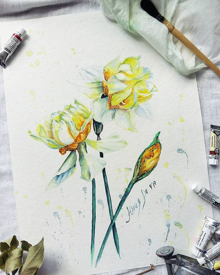 3 442 Likes 5 Comments Watercolor Illustrations Watercolor