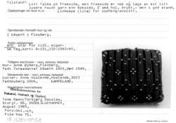 Photo of Knitting, Needle Cushion w / Pearls – Norwegian Folk Museum / Digital Museum