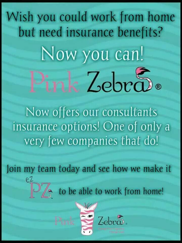 The Zebra Car Insurance Service Live In The Now User