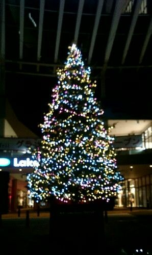 越谷レイクタウン クリスマスツリー レイク 越谷レイクタウン