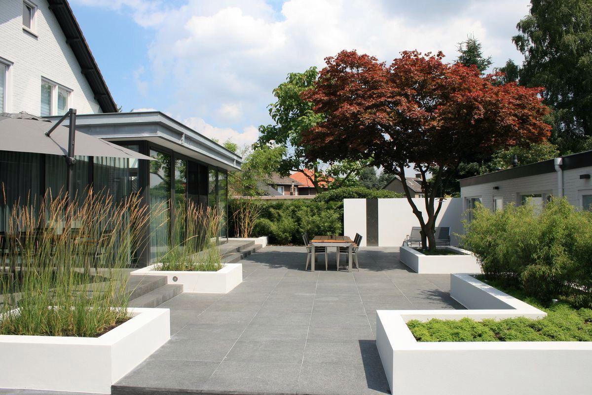 Buytengewoon villatuinen minimalistische tuin met n