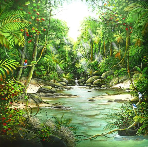 Ian Stephens Original Paintings Rainforest Paintings