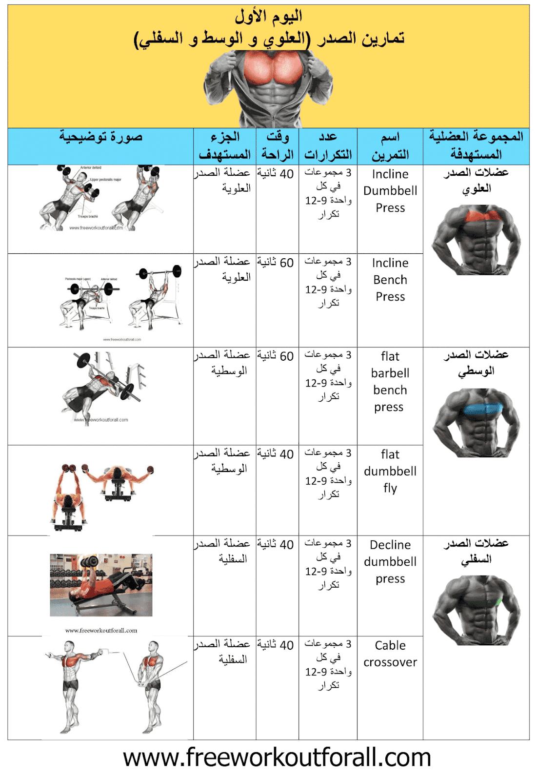 جدول تمارين كمال الاجسام 5 ايام Workout Schedule Gym Schedule Workout Routine For Men