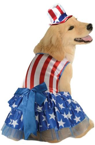 989e06cedf2 Patriotic Pooch Uncle Sam 4th Of July American Dog Pet Costumes Size Medium  15