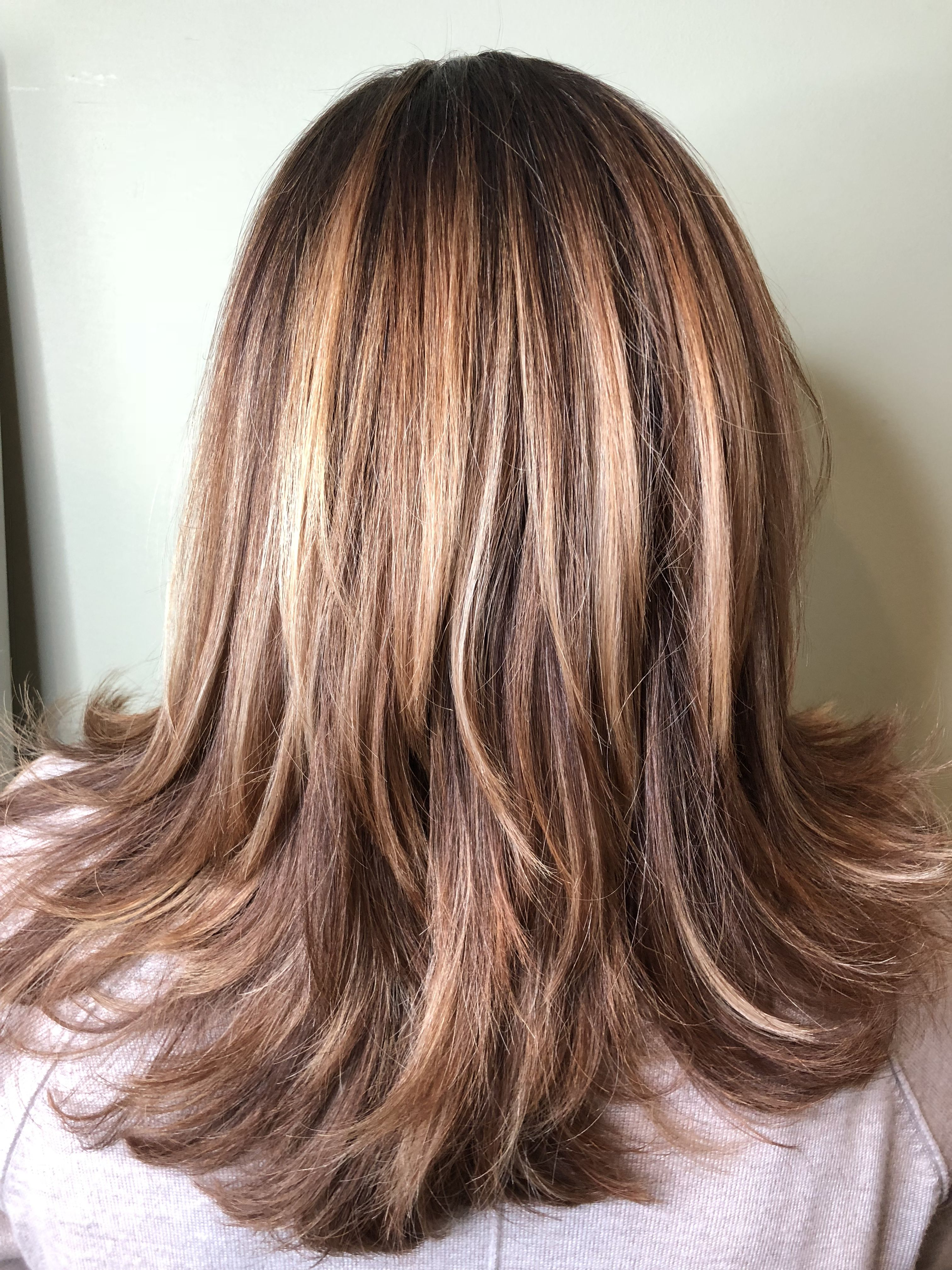 bronde Haircut and color, Brown hair with highlights