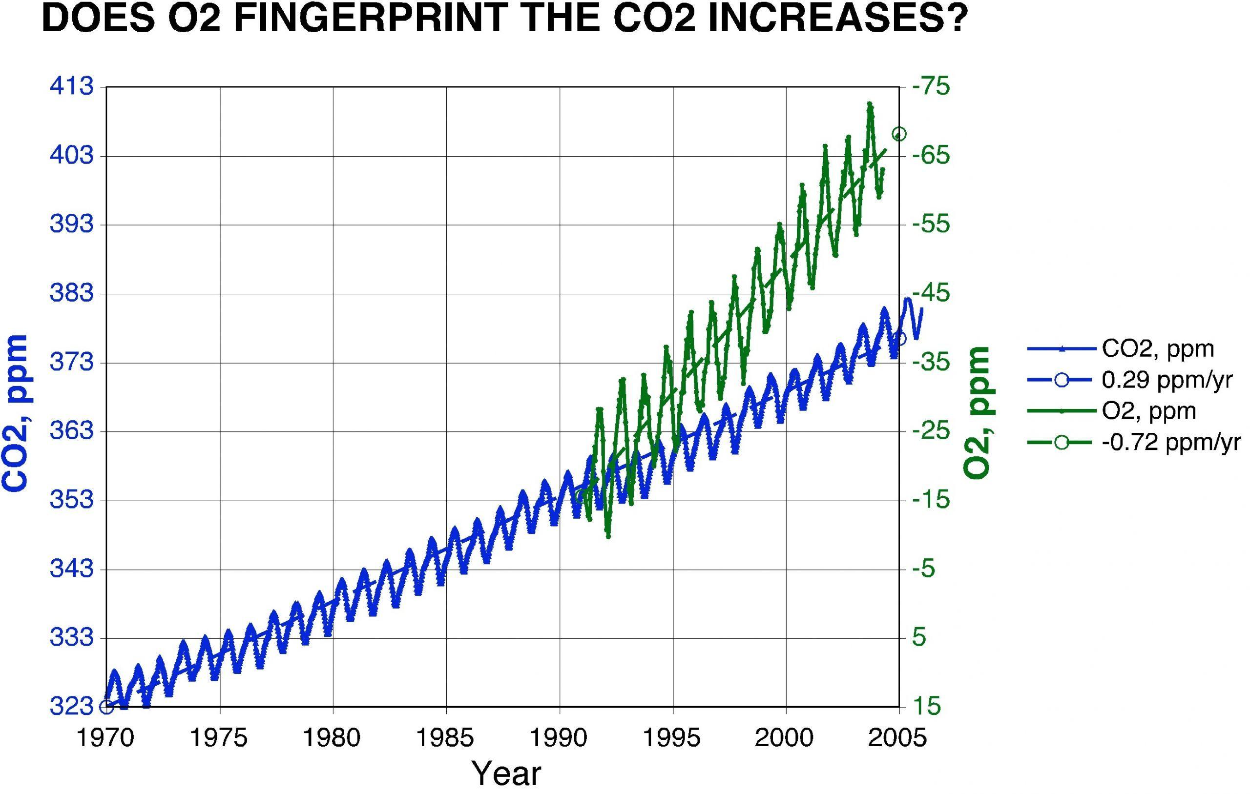 7 Memorable Carbon Footprint Worksheet Carbon Footprint Worksheet