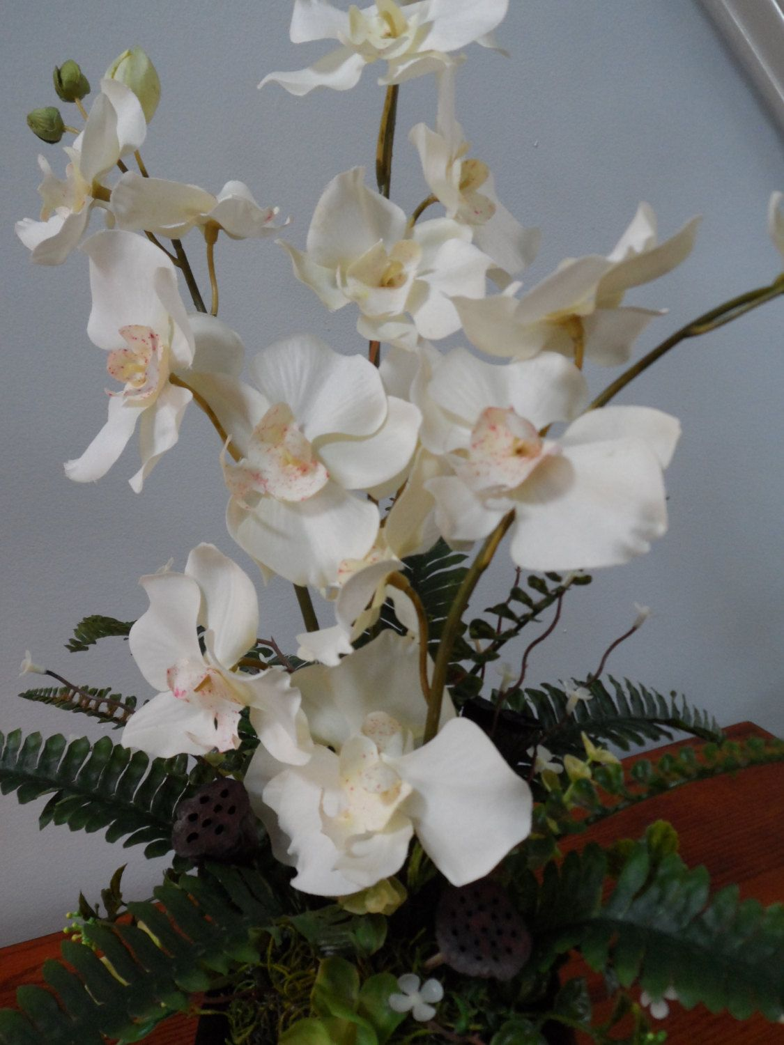 Orchid Arrangement White Orchid Arrangement Elegant Orchid Arrangement Orchid Floral Arrangement Elegan Orchid Arrangements Beautiful Orchids White Orchids