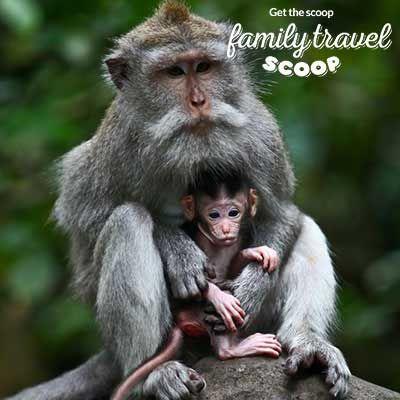 Bali Family Holidays