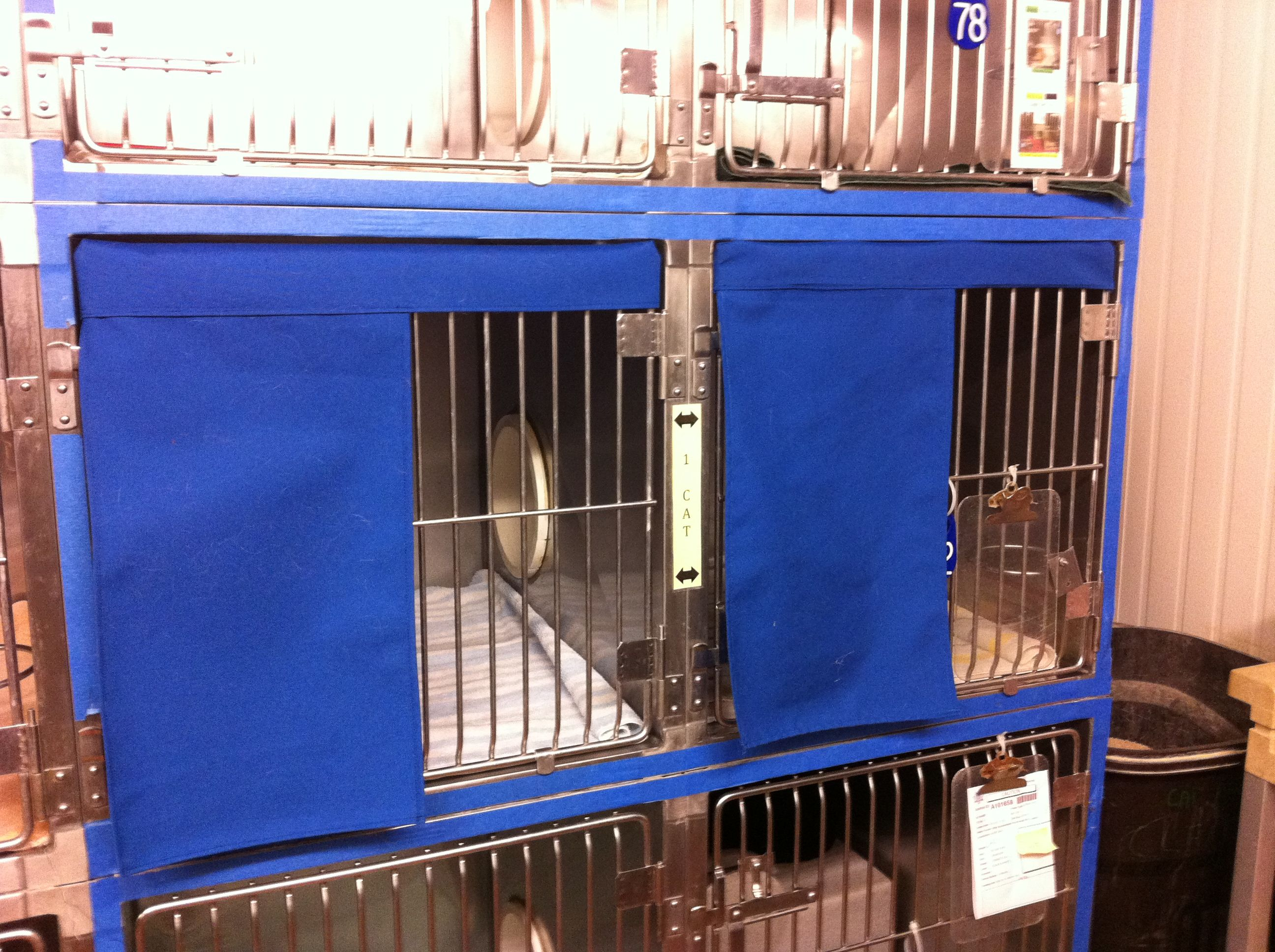 Housing Description Partial Cage Covers These Hand Made Versions Are Easy To Make And Can Provide Environmental Animal Shelter Cat Infographic Vet Medicine