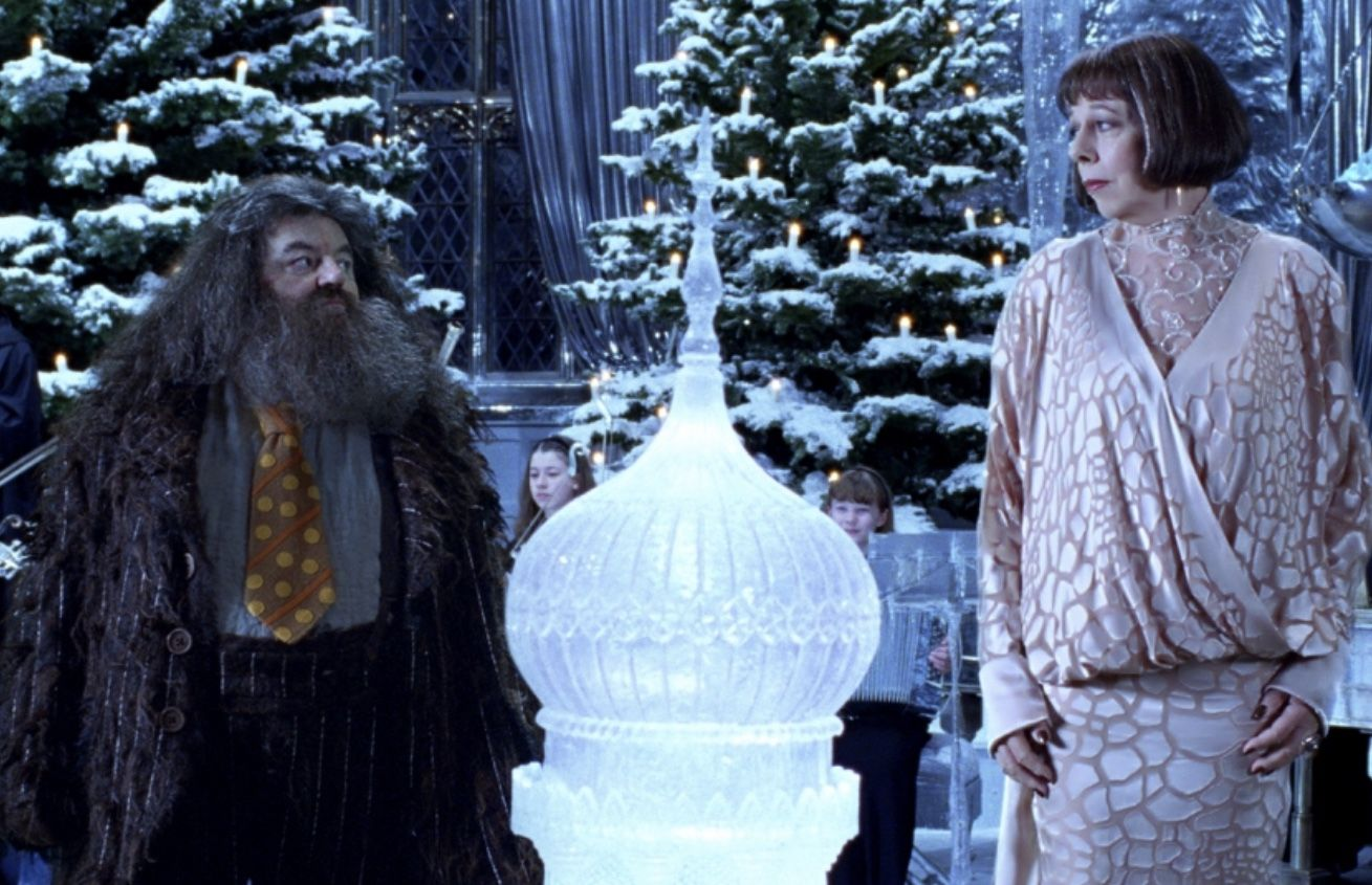 Hagrid Mme Maxime Harry Potter And The Goblet Of Fire 2005 Harry Potter Movies Goblet Of Fire Harry Potter