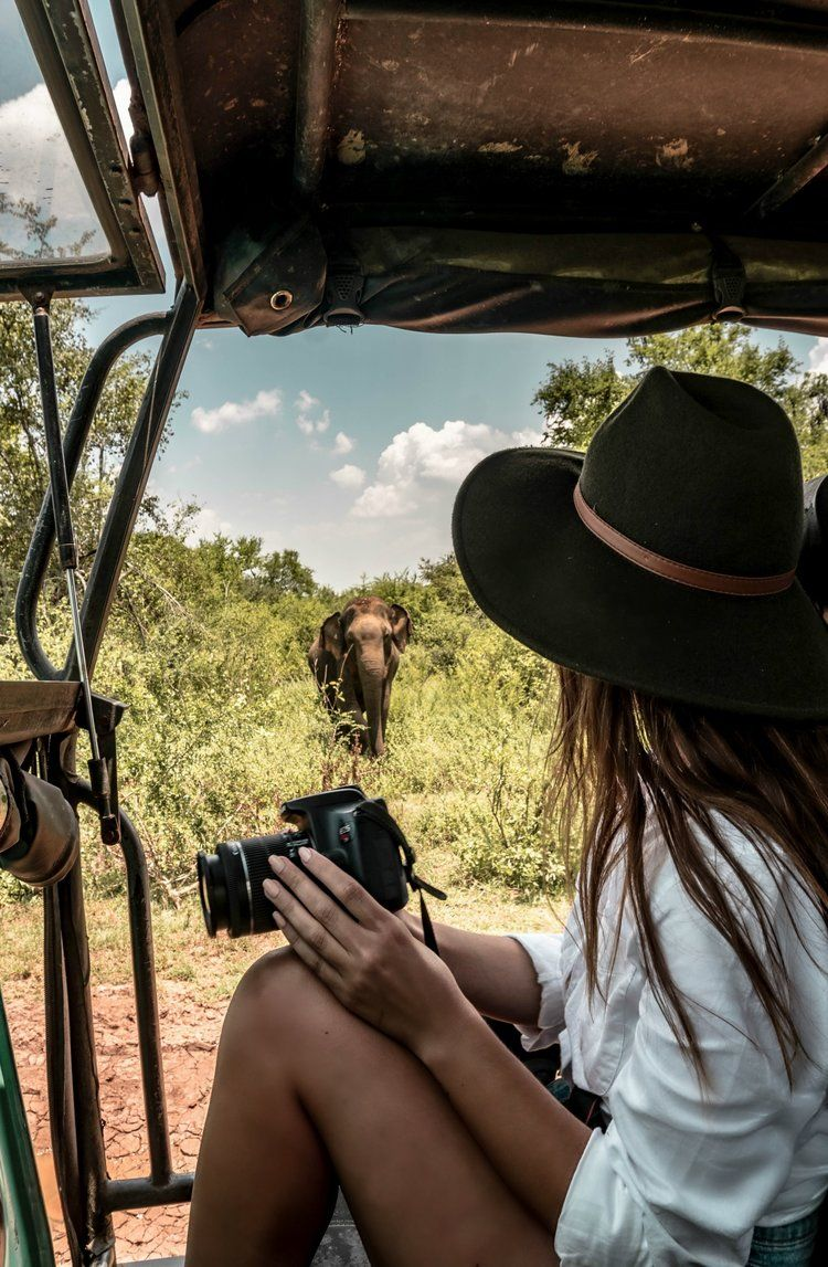 the ultimate safari guide to Udawalawe National Park in Sri Lanka: how to book, what to pack, + the cheapest way to get there — silly.little.kiwi