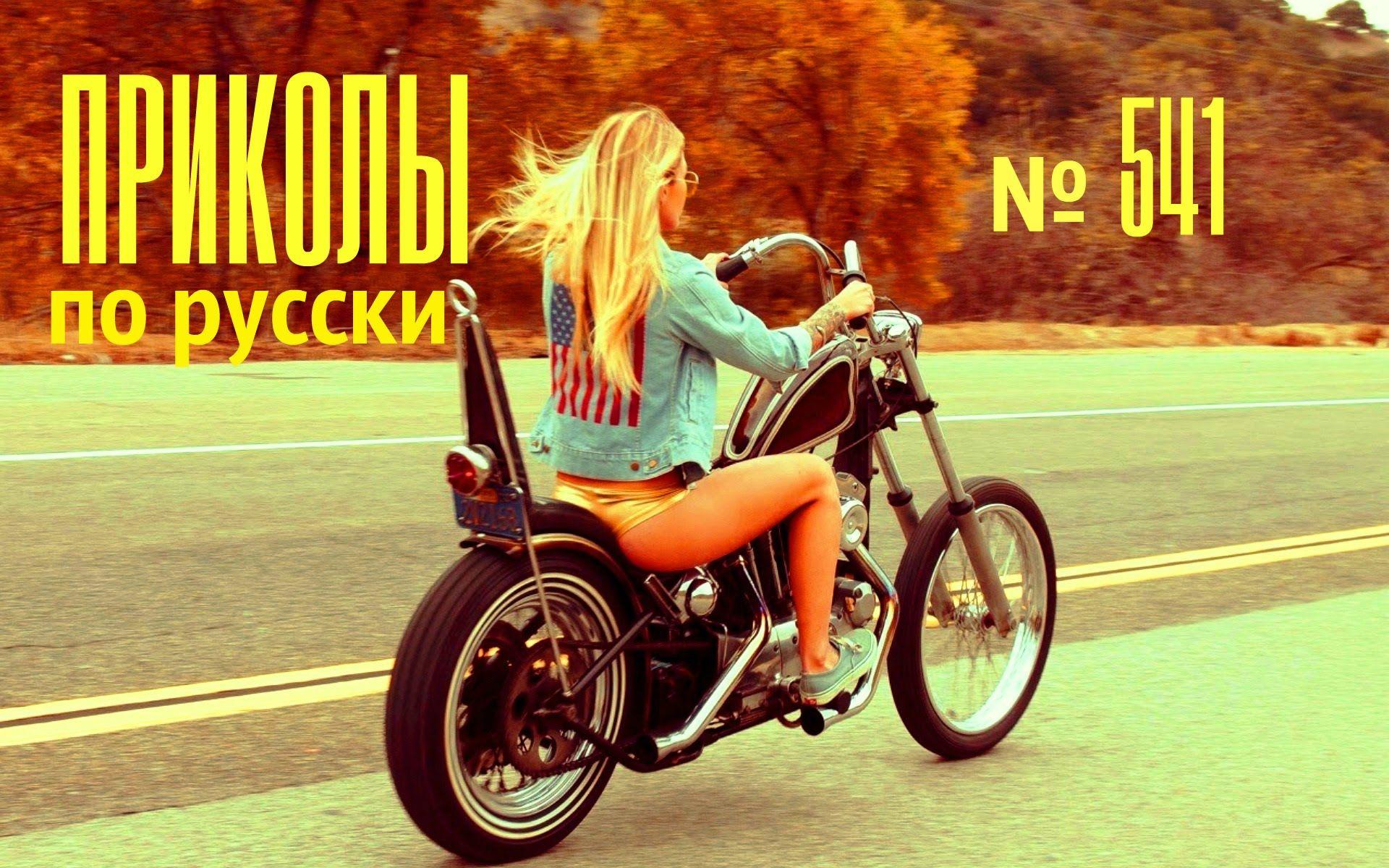 Бульмастиф картинки, приколы по русски 2016 картинки
